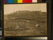 Sweat lodge frame - Cheyenne