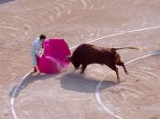 Bullfighting is legal in some countries.