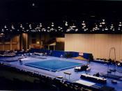 Gymnastics - Battle Creek