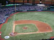 Tropicana Field equipped with artificial turf. In many artificial turf baseball installations, a full dirt infield is not provided, only the pitcher's mound and