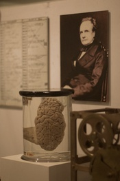 Charles Babbage, father of much of modern computing, is also displayed at the London Museum of Science- that's his brain in the jar