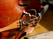 Cello String Instrument IMG_3760