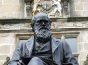 English: Shrewsbury's most famous son Charles Darwin's statue outside the library, formerly Shrewsbury School which he attended from 1818 to 1825, as a boarder although his family home was nearby. He disliked his time as a scholar, complaining about compu