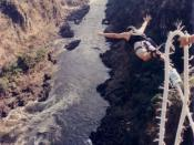 Spy007au bungee jumping off the Zambezi Bridge, Victoria Falls, Africa