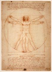 English: Vitruvian Man, Gallerie dell'Accademia, Venice Italiano: Uomo Vitruviano, Gallerie dell'Accademia, Venizia