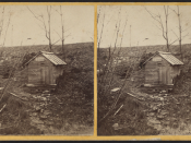 Jane McCrea Spring, Fort Edward, N.Y, from Robert N. Dennis collection of stereoscopic views