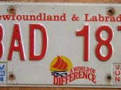 NEWFOUNDLAND 2005 license plate