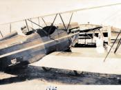 Brunner Winkle Bird with OX5 engine