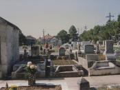 Cemetery Soniat C