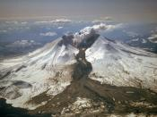 English: Mount St. Helens erupted often between 1980 and 1986. An explosive eruption on March 19, 1982, sent pumice and ash 9 miles (14 kilometers) into the air, and resulted in a lahar (the dark deposit on the snow) flowing from the crater into the North