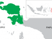 Indonesia West Irian Jaya map