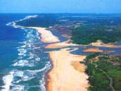 An estuary mouth and coastal waters, part of an aquatic ecosystem