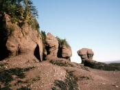 English: Rock formations at the Bay of Fundy, Canada.