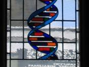 Stained glass window in the dining hall of Gonville and Caius College, in Cambridge (UK), commemorating Francis Crick, who co-discovered the molecular structure of DNA, received a Nobel Prize and was an honorary fellow of the college. The window represent
