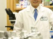 English: David Ho in his laboratory within the Aaron Diamond AIDS Research Center, New York, NY.