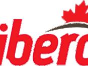Liberal Party logo, 2004-2009