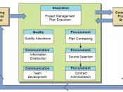 English: Executing Process Group Processes