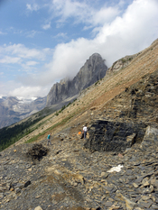 English: Walcott Quarry of the Burgess Shale (Middle Cambrian), British Columbia.