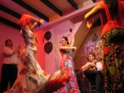 Flamenco culture is native to Andalusia.