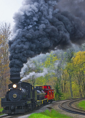 Freight Train -- Cass Scenic Railroad State Park (WV) May 2013