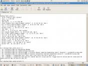 Example of an IRC Script
