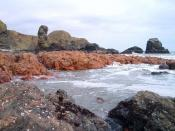 English: Felsite rocks Muchalls The dyke of pink rock in the middle ground is felsite a fine grained igneous rock.