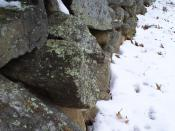 This is the stone wall at Frost's farm in Derry, New Hampshire, which he described in