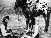 Nez Perce Indians with Appaloosa horse, around 1895