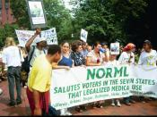 English: NORML members protest in Lafayette Park during the annual July 4th