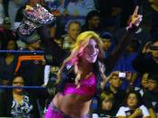 Natalya as the WWE Divas Champion on January 23, 2011, at the Hammond Civic Center in Hammond, Indiana.