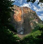 View of the Salto Angel (Angel Falls, named after Jimmie Angel) from the path overlooking the right bank of the creek created by the falls. Picture taken during dry season, when the falls have a small discharge. Angel Falls are the highest falls on earth.