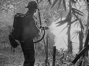 Da Nang, Vietnam - Sergeant Robert E. Fears clears an area using his flamethrower., 05/22/1970
