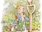 Illustration of Peter Rabbit eating radishes, from The Tale of Peter Rabbit