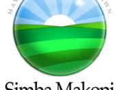Simba Makoni presidential campaign, 2008