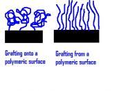 Grafting density