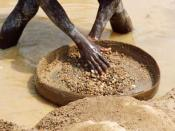 A miner in Kono District, Sierra Leone searches his pan for diamonds.