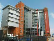 Birmingham Metropolitan College: Matthew Boulton Campus - Red Crane