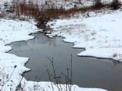 PDP Creek