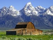 English: Grand Tetons Barns The John Moulton Barn on Mormon Row at the base of the Tetons.
