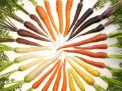 Carrots of many colors.