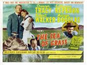 The Sea of Grass (film)