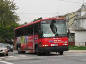 English: Coach USA Gray Line #17036 operates in shuttle service for St. John's University (New York).