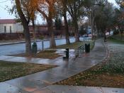 Roosevelt Park in the Snow--23 Nov 07 024