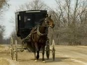 Photograph of an old order Mennonite, horse and carriage in Oxford County, Ontario Canada at Pignam and Ebenezer Road.