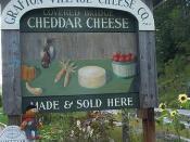 Ernesto at Grafton Cheese Company