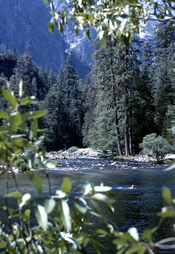 English: Taken in Yosemite National Park. That's my college roommate wading in the river.