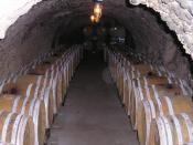 An underground wine cellar, California