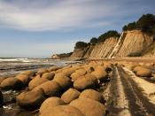 English: Bowling Balls Beach in Mendocino county, California, USA. Concretions on Bowling Balls Beach (Mendocino County, California) were weathered out of steeply-tilted Cenozoic mudstone Français : Galets de la Bowling balls Beach (Litt. « Plage des Boul