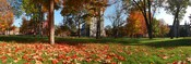 English: The Quad of Bowdoin College in the Fall