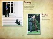 Barney; Buddy